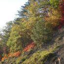 tetka jesen
