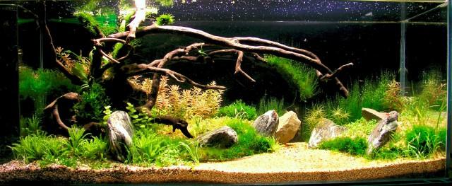 Akvarij 120l MH razsvetljava - foto