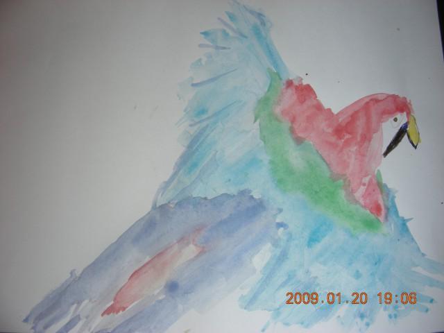 Papiga v letu