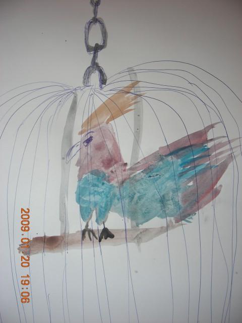 Papiga v kletki