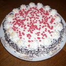 Sadna torta (DUŠANKA)