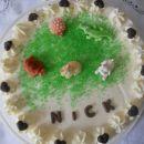 Fina skutina torta (mamamia)