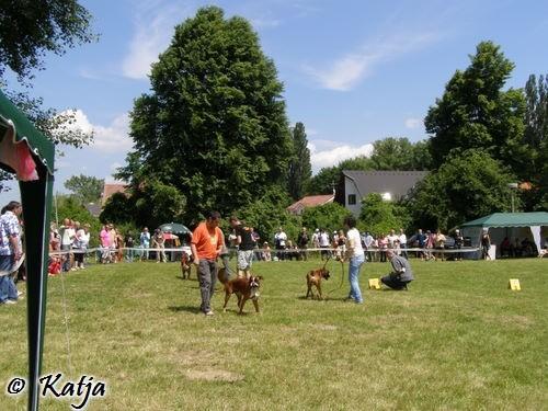 Atibox 2008 - foto povečava