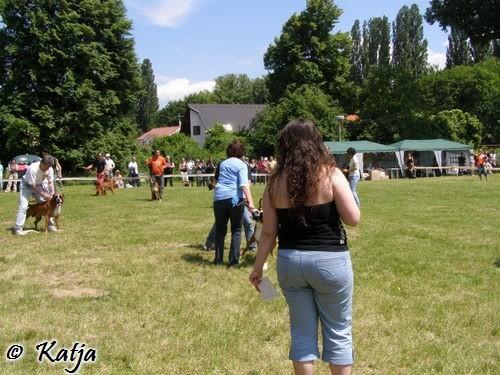 Atibox 2008 - foto