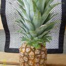 Kupi en ananas ki ima močne in sveže liste