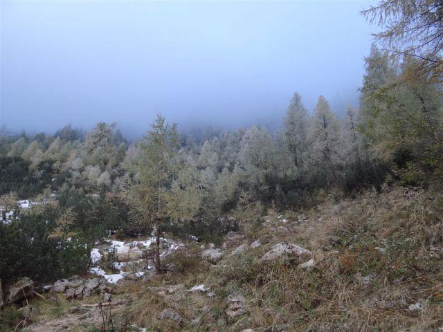 Bukovnik-Grohat-Raduha-Loka-(16.10..2011) - foto
