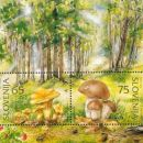 Slovenija 06.06.1996