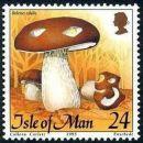 Otok Man  01.09.1995