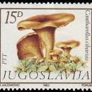 Jugoslavija  21.03.1983