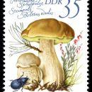 DDR 1980