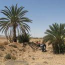 Tunizija 2008