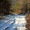 2016-12-31_Put iz potoka prema Korenjskim_2
