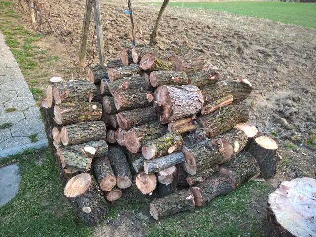 Izrada ogrijevnog drva - Page 22 23580609