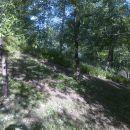 2015-05-29_Sedlo_malčirano 2