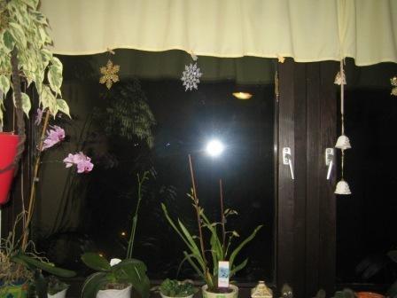 Veseli december - foto