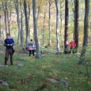 Odmor u šumi