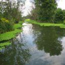 Jezera in ribniki