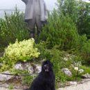 Gorenjska- junij 2007