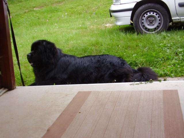 Gorenjska- junij 2007 - foto