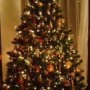 Naše prelepo božično drevesce