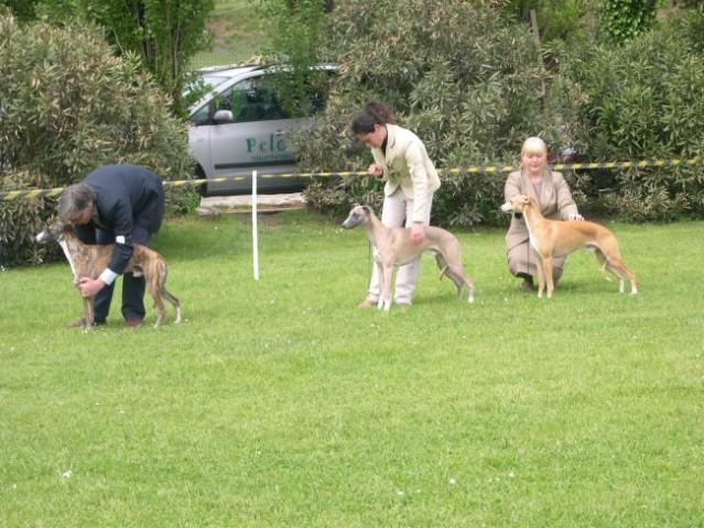 Lago di Garda 2006 - foto