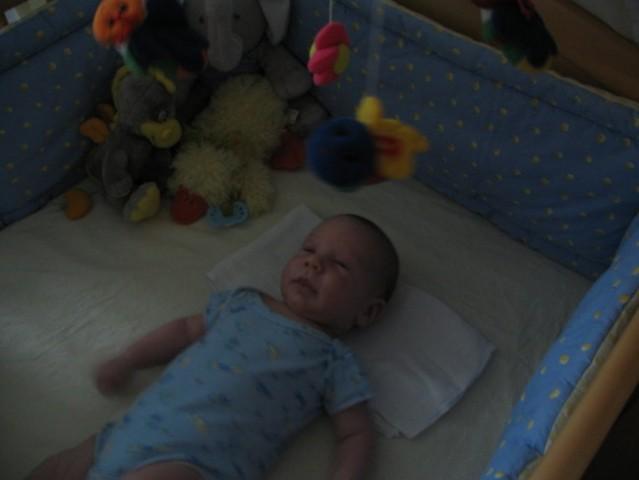 Kevin od 1.-2.meseca - foto