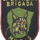 Našitek Slovenska vojska (Specialna brigada MoRIS) - Slovenian Army Patch ( Special brigad