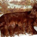 Pri mamici mar.2006