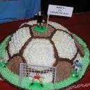 takšnole torto je imel pa Miha letos za 6.rojstni dan. Tale mi je zelo uspela, pa tudi dob
