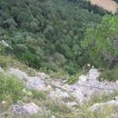 Zadnji metri plezalne poti Pittentaler Klettersteig; viden je borovec, pri katerem se konč