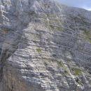 Pobočje Tosca nad Bohinjskimi vratci