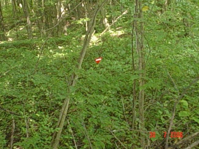 Crvena zastavica na kojoj piše bjelim slovima MINES dal smo prošli kroz minsko polje ili t