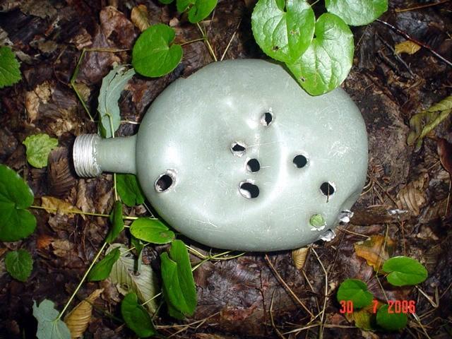 Tokom branja gljiva zapeo sam nogom za ovo zainteresiralo me je te sam iskopao iz sumskog