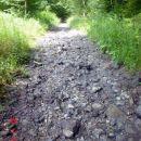 Suho korito večeg šumskog potoka mogli bi smo reći rječice.