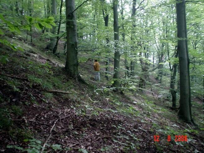 SSUMA U KOJOJ SE BRALO  12.08.2006 lOVNICA