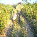 idemo kucci 22.08.2006 Sjeverno od mene ssume