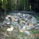 Ova drva nisu bila tu jucce pre podne  22.08.2006 Sjeverno od mene ssume