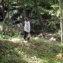 Moja supruga u potrazi za Gljivama Po čemu hodamo ? U ovoj šumi smo našli crvene zastavic