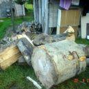 skupljena drva dovuccena pred ssupu za skladisstenje 22.09.2006 Kamenica