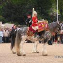 Menjava konjeniške straže II.