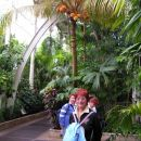 Pod kokosovimi palmami