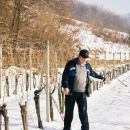 začekek del v vinogradu foto: nn
