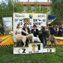 CACIB & CAC BRČKO 2006