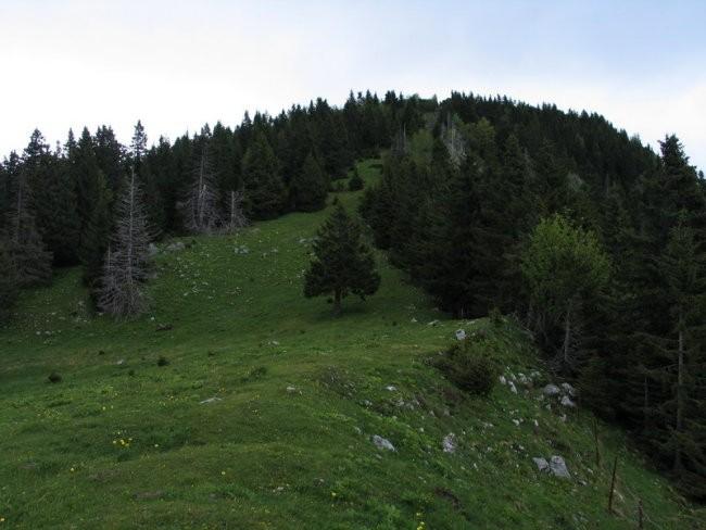 Prek travnikov z vrha na drugo stran...