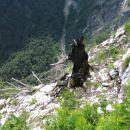 Z vrha Komarče žalosten strmi...
