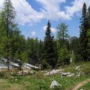 Pot proti planini Viševnik je navdušujoča...