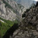 Polička v divjini prehoda z Zelenice na Šraj Pesek. Prekrasno! Zadaj stena Rzenika ...