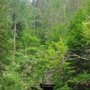 Prek mostu na začetku (navzdol) ...