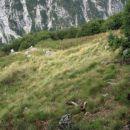 Nekdanja planina Zajavor ...