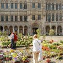 Grand Place ob razstavi rož